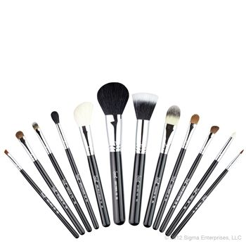 AUTHENTIC BRAND NEW BOX SIGMA Essential Kit BRUSHES~12 HIGH QUALITY
